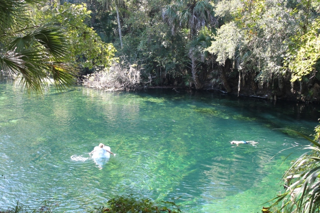 Blue Springs National Park, FL By LBedoya 2014